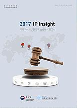 2017년 IP Insight 보고서